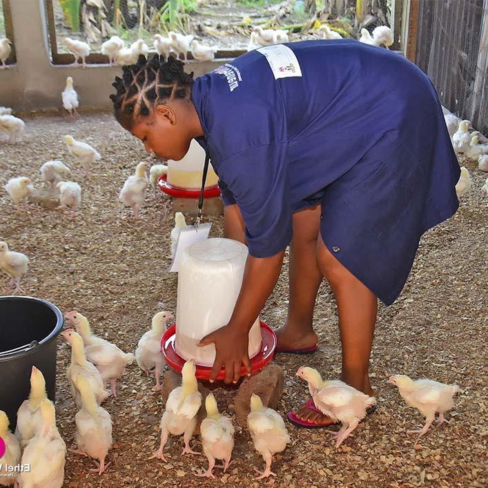 Ethel Women Initiative - FemPreneur